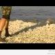 Uued Šveitsi sokid (video)