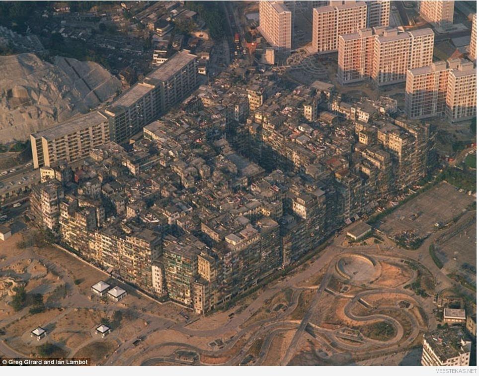 Kowloon Walled City's ei olnud valitsust, seal ei olnud mingisuguseid terviseinspektsioone ja seadused seal ei kehtinud. Tihtipeale, kui keegi põgenes korrakaitsjate eest, siis ta pages just sinna linna, teades, et politsei sinna järgi ei tule.