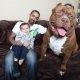 Pitbull on mõnes riigis keelatud, ometi arvavad need vanemad, et seda 80kg mürakat saab oma noore pojaga usaldada