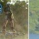 Marty McFly päriselus – Kanada leiutaja läbib hõljuk-rulal 276m!