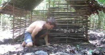 Kutt ehitab metsas mitte millegist uhke elamise. Vägev!