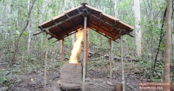 Primitiivne tehnoloogia: kutt ehitab kivikatusega varjualuse