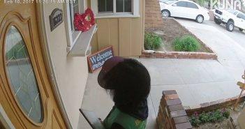 Müügimehed, olge ettevaatlikud! Koer hüppab välisuksel klaasi eest ära, kui naistrahvas tuli flaierit ukse vaheel pistma