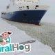 Mees astub liikuva laeva pardale