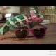 Kameeleon muudab värvi (video)