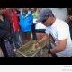 Katsed veega ekvaatori lähedal (video)