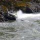 Šokeeriv moment, kui kiirpaat rahva ees vastu kive lendab ja tagurpidi vette vajub