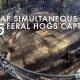 Metssea püüdjaga saab püüda 45 siga korraga