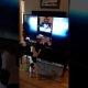 Vaata, kuidas koer reageerib, kui iseennast telekast näeb