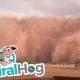 Apokalüptiline timelapse tohutust tolmutormist Austraalias